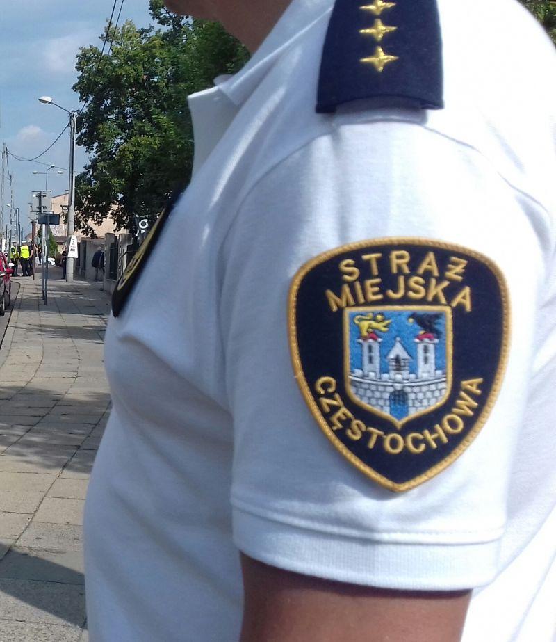 173 weekendowe interwencje na wniosek mieszkańców miasta